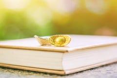 Chinese gouden en zilveren sycee of yuanbaobootbaar op een boek royalty-vrije stock afbeelding