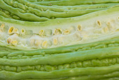 Chinese gourd Royalty Free Stock Photos