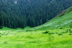 Chinese grassland scenery. Xinjiang Wutanggou Stock Image