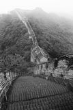 Chinese great wall Stock Photo