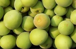 Chinese Green Plums Royalty Free Stock Photography