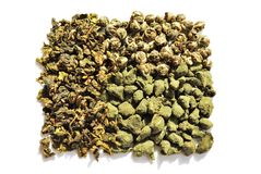 Chinese green tea Stock Images