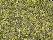 Chinese Green Tea Leaves Royalty Free Stock Photos
