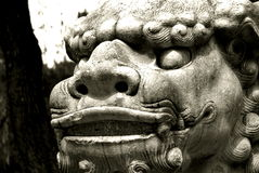 Chinese guard dragon stature. Ancient Chinese dragon stature in China buddist temple in China Royalty Free Stock Photos