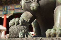 Chinese guardian lion Royalty Free Stock Photos