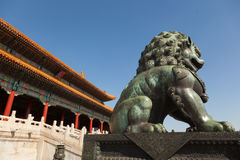 Chinese guardian lion Royalty Free Stock Image