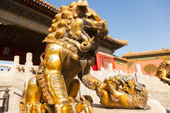 Chinese guardian lion Royalty Free Stock Images