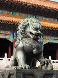 The Chinese guardian lion Royalty Free Stock Photo