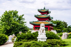 Chinese guardian lion and Japanese Pagoda Zen Garden Stock Image