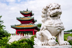 Chinese guardian lion and Japanese Pagoda Zen Garden Stock Photo