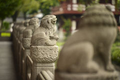 Chinese guardian lion statue Stock Photography
