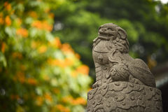 Chinese guardian lion statue Royalty Free Stock Images