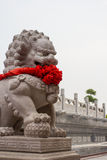 Chinese guardian Lions. Are front of Chinese temple door Stock Photos