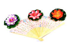 Chinese hand fan Stock Images