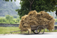 Chinese Hay Cart Stock Image