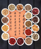 Chinese Healing Herbs Stock Photography