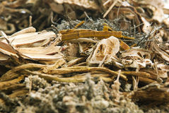 Chinese Herb Royalty Free Stock Photography