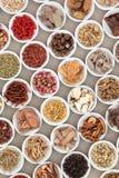 Chinese Herb Ingredients Royalty Free Stock Image