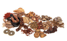 Chinese Herb Ingredients Stock Photography