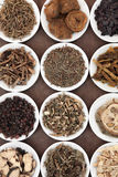 Chinese Herb Selection Stock Photos