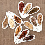Chinese Herb Selection Royalty Free Stock Image