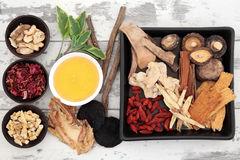 Chinese Herbal Ingredients Stock Image