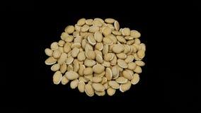 Chinese Herbal medicine Baipiandou. Chinese Herbal medicine on black background Stock Photos