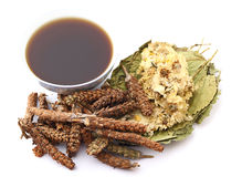 Chinese herbal medicine drink with ingredient Stock Images