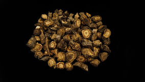 Chinese Herbal medicine fangfeng. Chinese Herbal medicine on black background Stock Photography