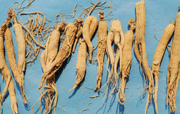 Chinese herbal medicine ginseng stock photography