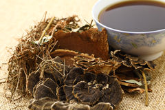 Chinese herbal medicine with ingredient Royalty Free Stock Images