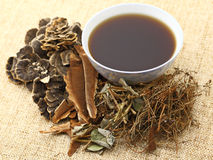 Chinese herbal medicine with ingredient Royalty Free Stock Photos