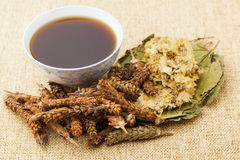 Chinese herbal medicine with ingredient Stock Photo