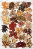 Chinese Herbal Medicine Royalty Free Stock Image