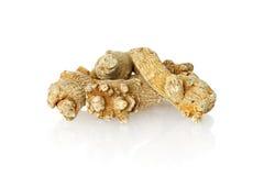 Chinese Herbal medicine - Panax Notoginseng Royalty Free Stock Image