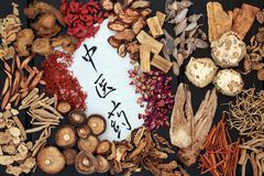 Chinese Herbal Medicine. Traditional chinese herbs used in alternative medicine with calligraphy script on rice paper on dark wood background. Translation reads stock image