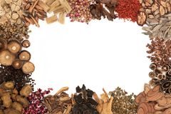 Chinese Herbal Medicine Border stock image
