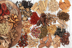 Chinese Herbal Medicine Stock Photography