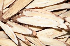 Chinese herbal medicines -- Astragalus Stock Images