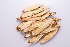 Chinese herbal medicines -- Astragalus on white background, blank for text royalty free stock photos