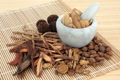 Chinese Herbal Mediicne Royalty Free Stock Photography