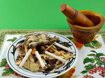 Chinese Herbs. Some Chinese herbs and mixing bowl royalty free stock photos