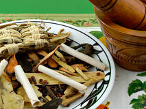 Chinese Herbs. Closeup of Chinese herbs and mixer royalty free stock images