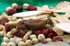 Chinese Herbs Royalty Free Stock Photos