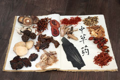 Chinese Herbs and Acupuncture Needles. Acupuncture needles with chinese herb selection used in herbal medicine with calligraphy script on rice paper on old hemp Royalty Free Stock Photos
