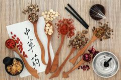 Chinese Herbs and Acupuncture Therapy. Chinese acupuncture needles and moxa sticks used in moxibustion therapy with herbs and calligraphy script on rice paper Royalty Free Stock Photos