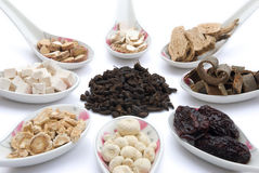 Chinese herbs blends. On white Stock Photography