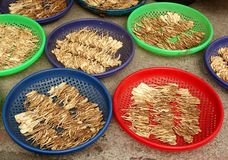 Chinese Herbs Drying in the Sun Stock Photos