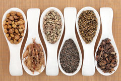 Chinese Herbs Stock Image