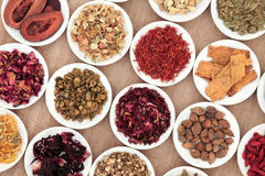 Chinese Herbs Royalty Free Stock Photo